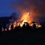 Moderne Technik sorgt für saubere Biomasse-Verbrennung